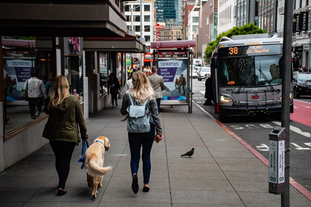 two women walking along a sidewalk  one is walking a dog in a downtown area. several landmarks are present street pole and bus shelter